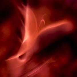 Steven Poulton - Flame Art