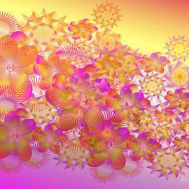 Iris Gelbart - Floral Wonder