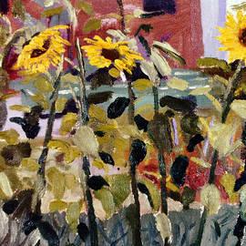 David Zimmerman - Flowers For Algernon