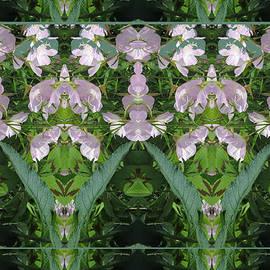 Navin Joshi - Flowers from CherryHILL NJ America Silken Sparkle Purple Tone Graphically Enhanced Innovative Patter