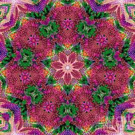 Janice DeLawter - Flowers