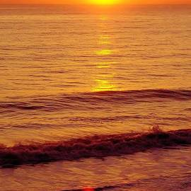 D Hackett - Golden - Sunrise