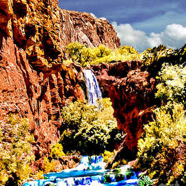 Bob and Nadine Johnston - Grand Canyon Waterfall