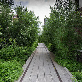 Gary Eason - High Line NYC