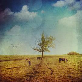 Dirk Wuestenhagen - Horses and a Tree