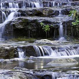 Paul Riedinger - Horton Creek 5