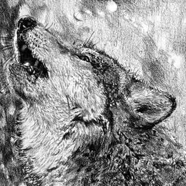 J McCombie - Howling