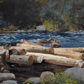 Winslow Homer  - Hudson River