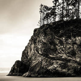Paul Haist - Hug Point Oregon No. 1