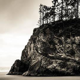 Paul Haist - Hug Point Oregon No. 1