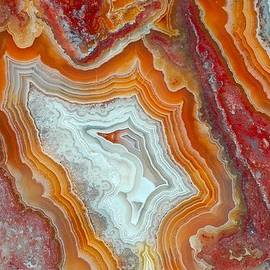 Lilia D - Inside the gemstone - crazy lace agate