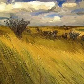 Randy Sprout - Iowa Prairie Grasses