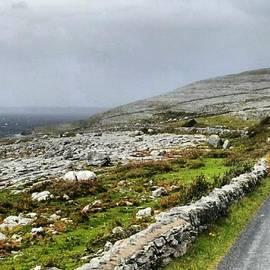 Jill Amy - Irish Countryside