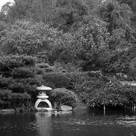 Ross Henton - Japanese Garden