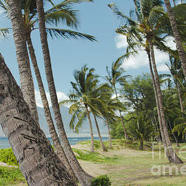 Sharon Mau - Kawililipoa Beach Kihei Maui Hawaii