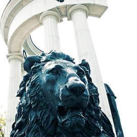 Lali Kacharava - Lion