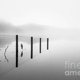 John Farnan - Loch ard early mist