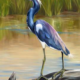 Phyllis Beiser - Louisiana Heron