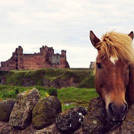 RicardMN Photography - Lovely horse and Tantallon Castle