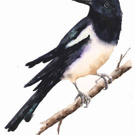 Alison Fennell - Magpie Painting