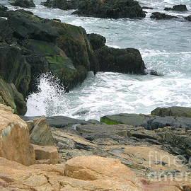 Denise Mazzocco - Maine Rocky Coastline