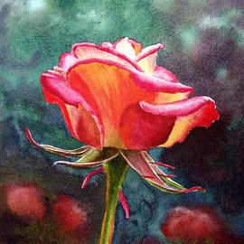 Irina Sztukowski - Morning Rose