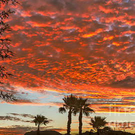 Robert Bales - Morning  Sunrise