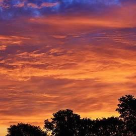 Bruce Bley - Mornings Early Light