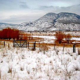 Kathy Bassett - Nestling Into Winter