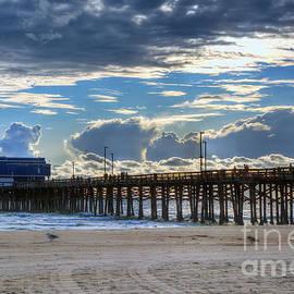 Eddie Yerkish - Newport Beach Pier