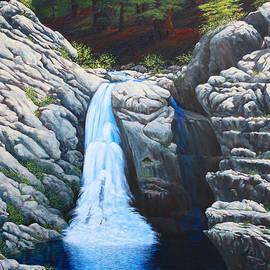 Tom Joslin - North Fork Falls