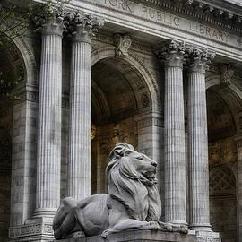 Jerry Fornarotto - NY Library Lion