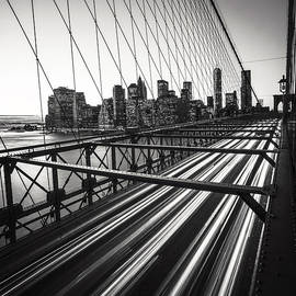 Nina Papiorek - NYC Brooklyn View