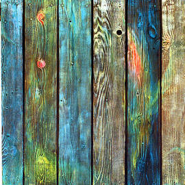 Asha Carolyn Young - Old Barnyard Gate with Colors Brightened
