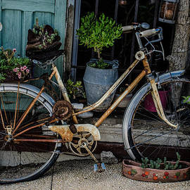 Dany Lison - Old bicycle