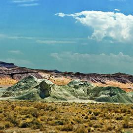 Bob and Nadine Johnston - Painted Desert National Park