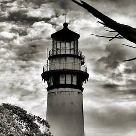 Bob Wall - Pigeon Point Lighthouse