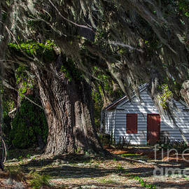 Dale Powell - Plantation Cabin