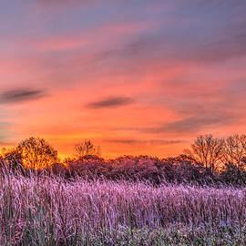 Roger Passman - Illinois Prairie Moments Before Sunrise