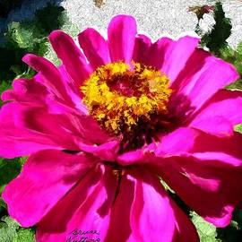 Bruce Nutting - Pretty Pink Flower