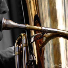 Steven  Digman - Profile in Tuba
