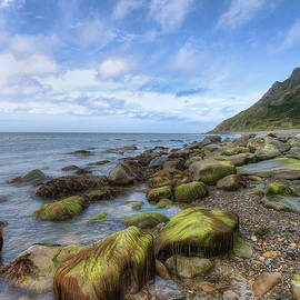 Ian Mitchell - Rocky Beach