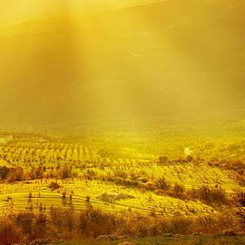 Roksana Bashyrova - Rural landscape with sun rays