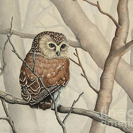 Renee Forth-Fukumoto - Sawhet Owl Woods Watcher