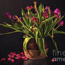 Feryal Faye Berber - Floral- Pink Tulips