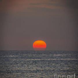 Mitch Shindelbower - Setting Sun