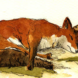 Juan  Bosco - Sleeping red fox