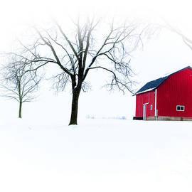 Tina M Wenger - Snow All Around Red Barn