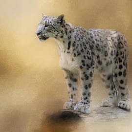 Jai Johnson - Snow Leopard