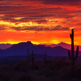 Saija  Lehtonen - Sonoran Skies on Fire